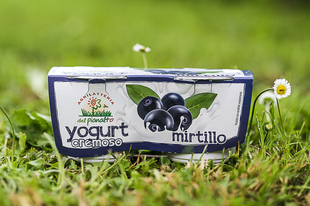 lo yogurt al mirtillo dell'agrilatteria del pianalto