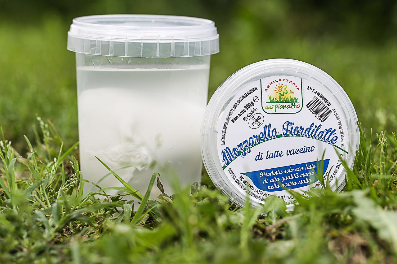 mozzarella fiordilatte dell'agrilatteria del pianalto